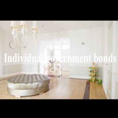 Individual government bonds